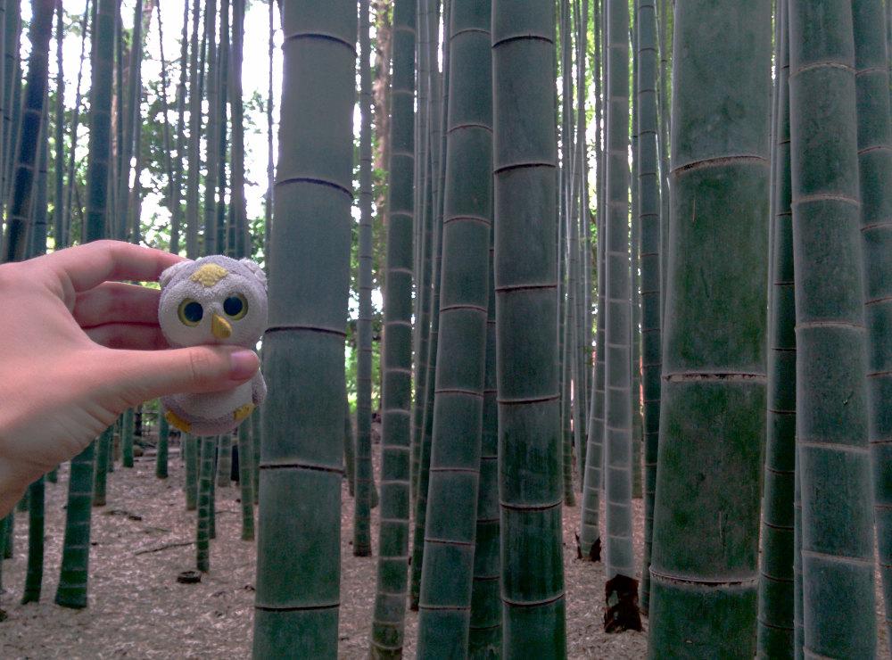 ... der manchmal auch aus Bambus bestand (Kamakura, Japan)...