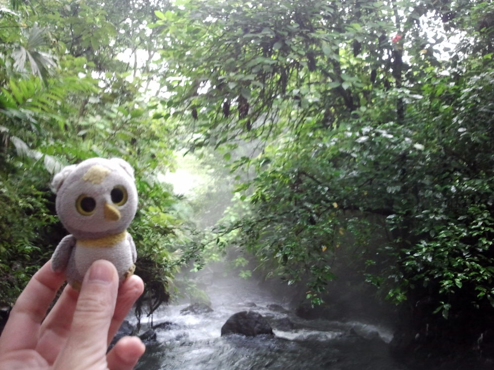 ... in heißen Quellen (La Fortuna, Costa Rica)...