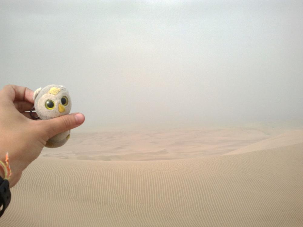 ... in der trockenen Wüste (Huacachina, Peru)...