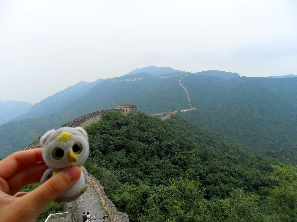 ... während kilometerlangen Wanderungen (Mutianyu, China)...