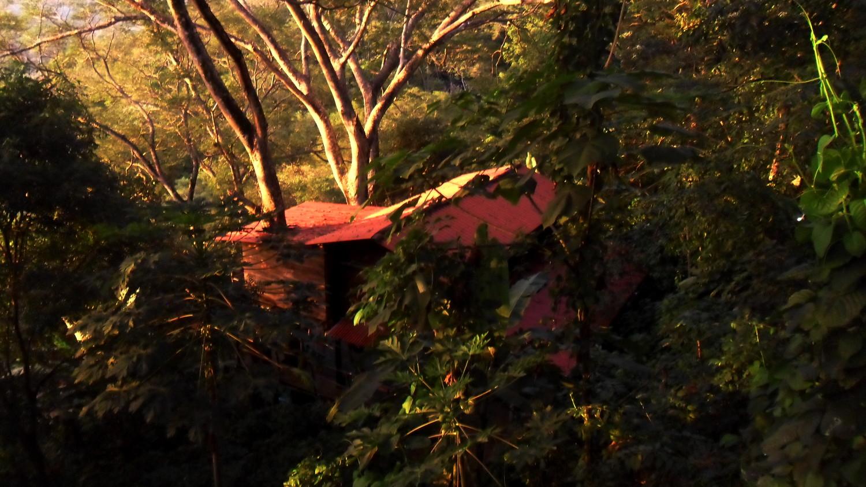 Nicaragua-treehouse