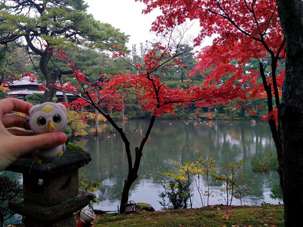 ... zu allen Jahreszeiten (Niigata, Japan)...