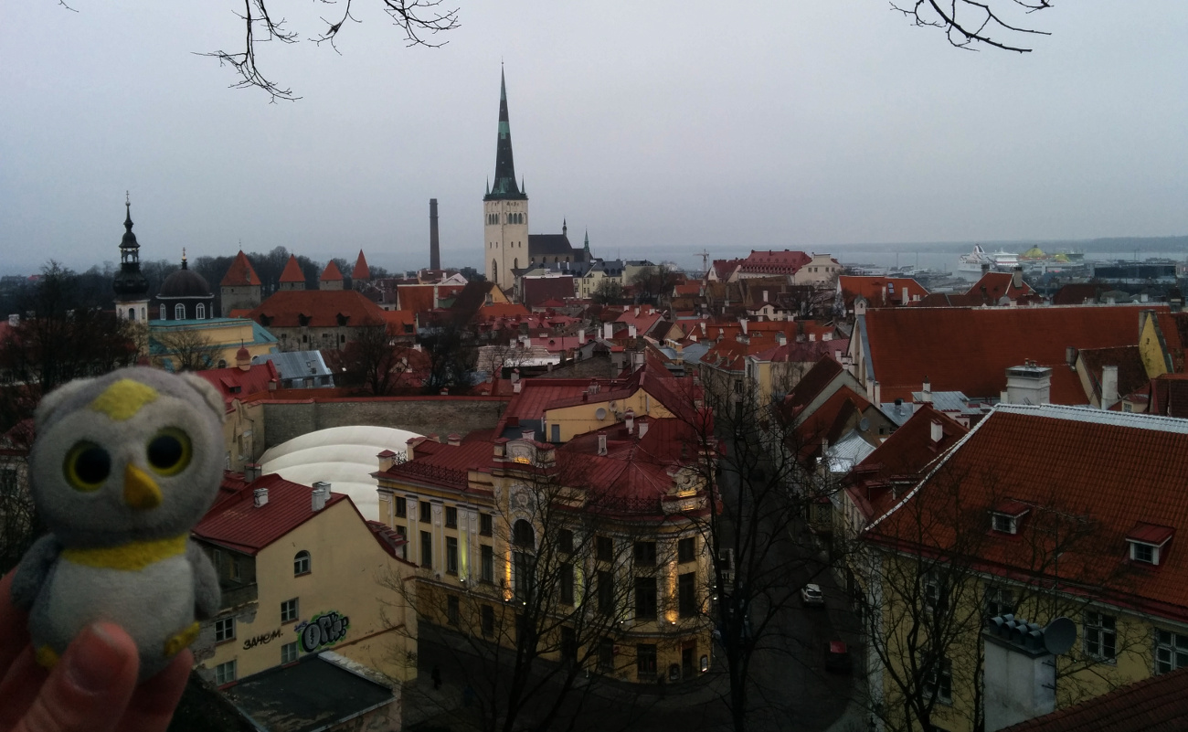 Aussicht auf Tallinns Altstadt. Estland